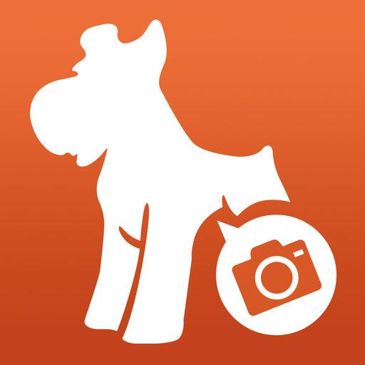 Dog cameraアイコン