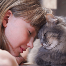 猫 頭突き 愛情表現