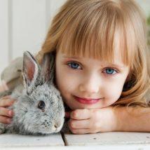 子ウサギと子供