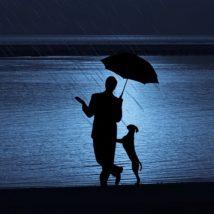雨の日の散歩について